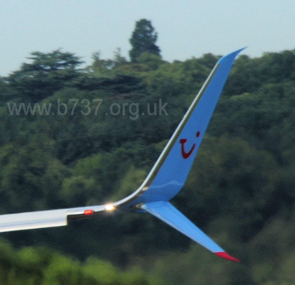 Split Scimitar Winglet
